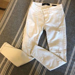 Hollister | Low Rise Jeans | Size: W24 L26